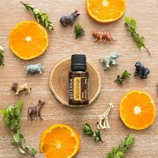 doTERRA WILD ORANGE (divoký pomaranč) 15ml